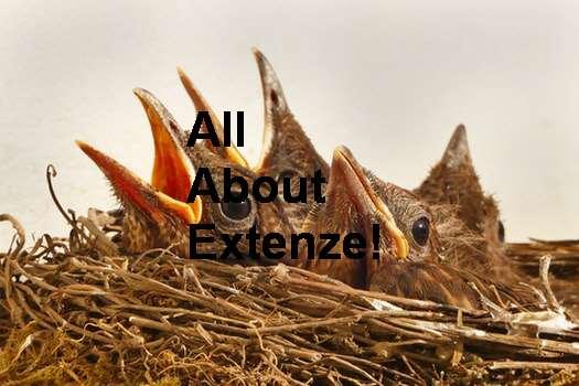 Extenze Extended Release Maximum Strength Male Enhancement <a href=